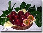 母島産 パッションフルーツ