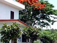 父島の宿「きり丸HOUSE」